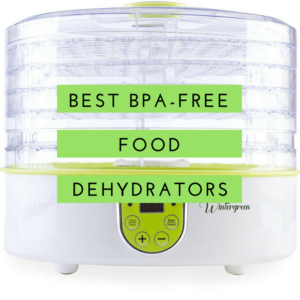 Best BPA Free Food Dehydrators