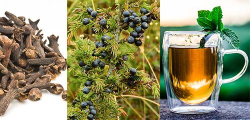 best 5 essential oils for sore throat strep throat